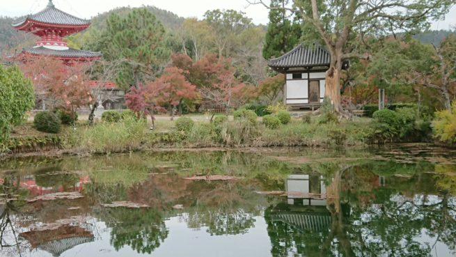 大覚寺へ行って来ました